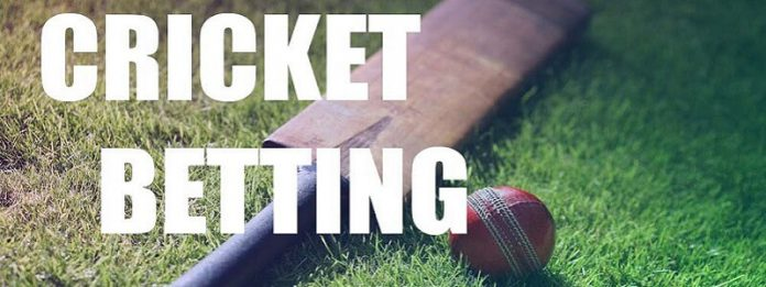 Tips And Techniques For Winning Bets In Cricket